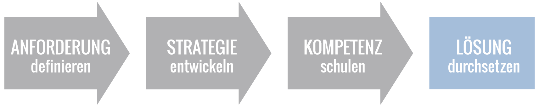 Impulse setzen: Anforderung definieren, Strategie entwickeln, Kompetenz schulen, Lösung durchsetzen